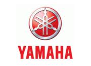 Yamaha Foam